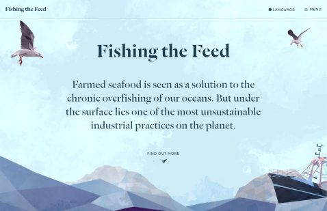 Overview of Fishing The Feed